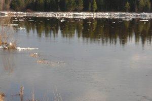 Река. Фото из архива пресс-службы ГУ МЧС России по Иркутской области