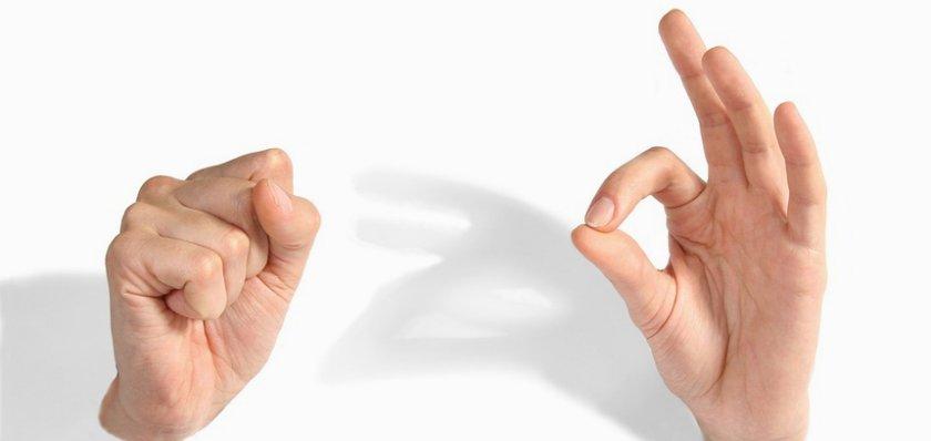 «Молчановка» предлагает научиться разговаривать на языке жестов