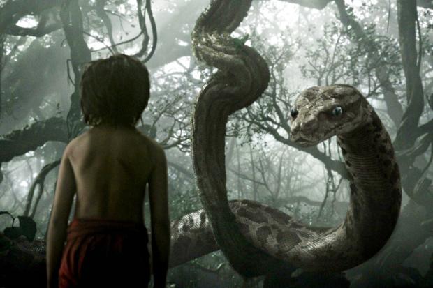Кадр из фильма «Книга Джунглей». Фото с сайта www.kinopoisk.ru