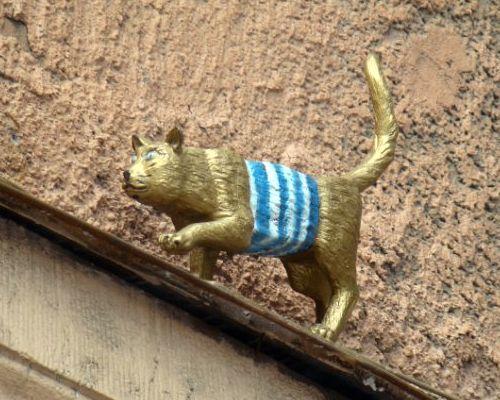 Всемирный день петербургских кошек