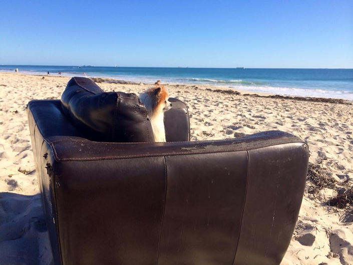 Персик на пляже