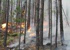 Лесной пожар. Фото с сайта ГУ МЧС по Иркутской области