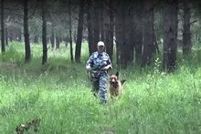 Скриншот видео пресс-службы УМВД России по Ангарску