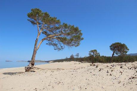 Сарайский пляж. Фото пресс-службы ФГБУ «Заповедное Прибайкалье»