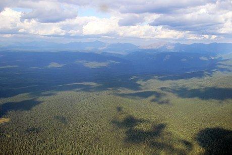 ВИркутской области полыхает порядка 280 гектаров леса
