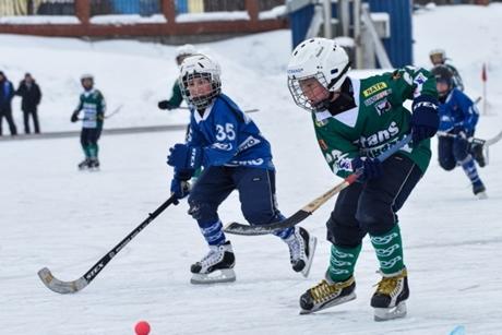 ВИркутской области создадут 8 отделений спортивной школы похоккею смячом