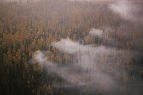 ВБратском районе сняли введенный из-за лесных пожаров режим чрезвычайной ситуации