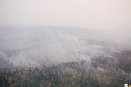 Около 90 гектаров леса полыхает натерритории Байкало-Ленского заповедника