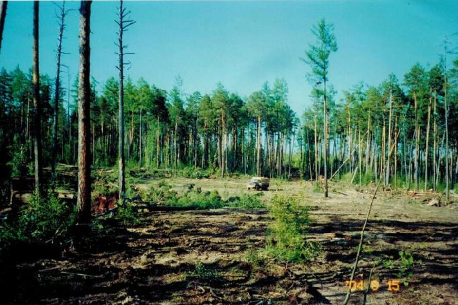 Подготовительные работы на будущей первой кустовой площадке ИНК, 2004 год