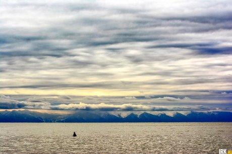 Фильм оподводном мире Байкала снимут для National Geographic летом