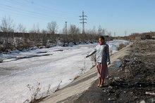 Очищенный от мусора берег Ушаковки. Фото Иркутского отделения ОНФ