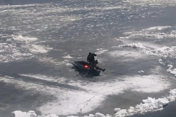 Работники МЧС спасли провалившуюся под лёд беременную самку изюбря вУсть-Куте