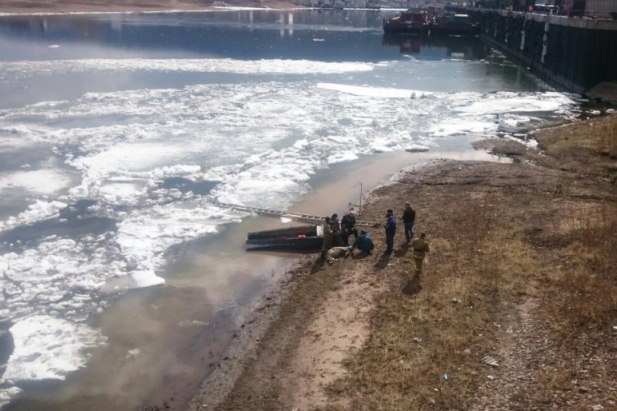 Спасатели вытащили изледяного плена беременную самку изюбря вУсть-Куте Иркутской области
