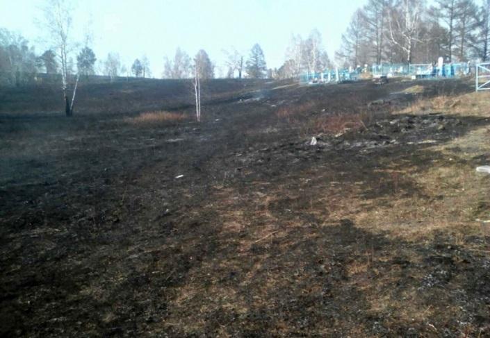 Сжигание мусора накладбище стало первопричиной лесного пожара вИркутской области