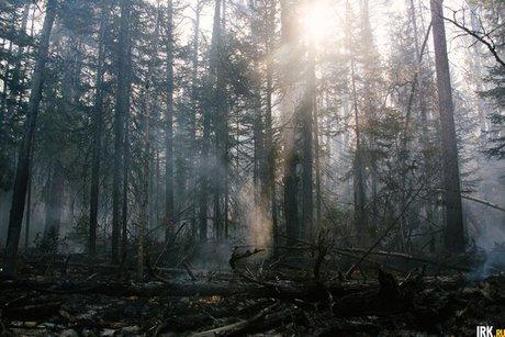 Из-за распространения пожаров «Заповедное Прибайкалье» приостановило выдачу разрешений напосещение нацпарка