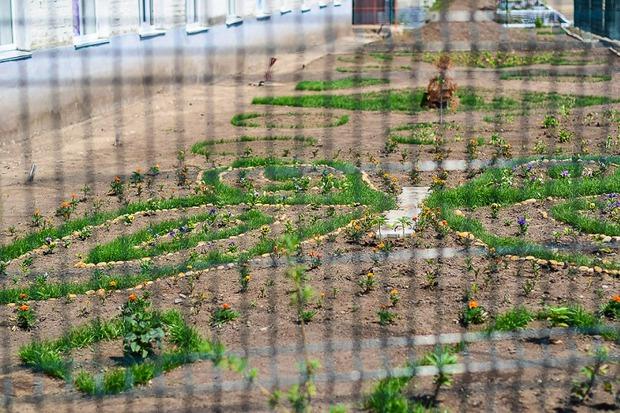 За газоном на территории колонии тщательно следят