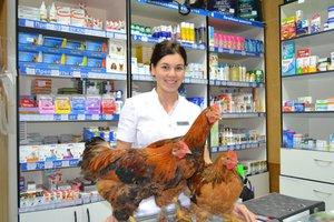 Ветеринарная аптека «ОГБУ Иркутская ГСББЖ»