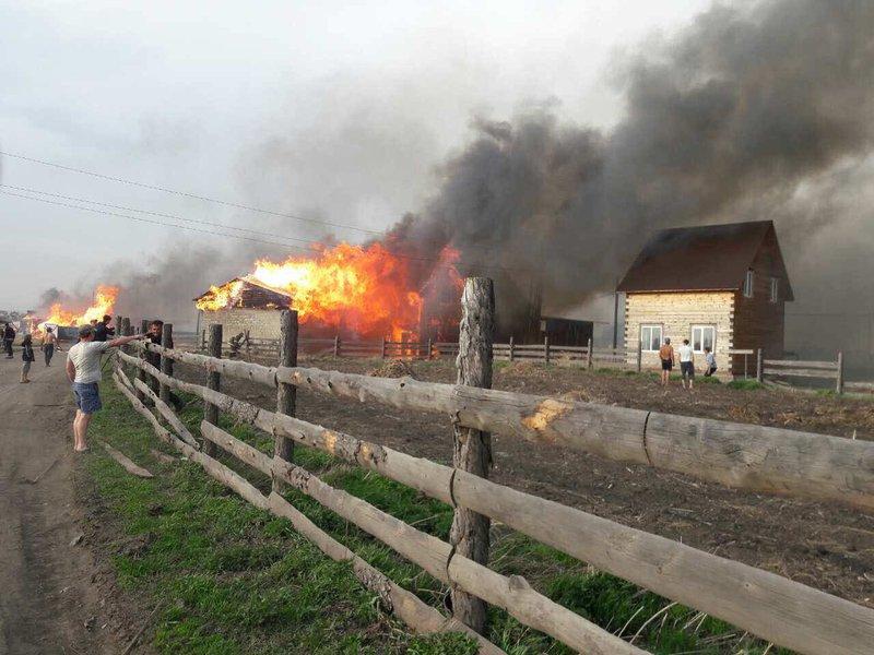 Опубликованы фото крупного пожара в Грановщине: сгорела частная пилорама