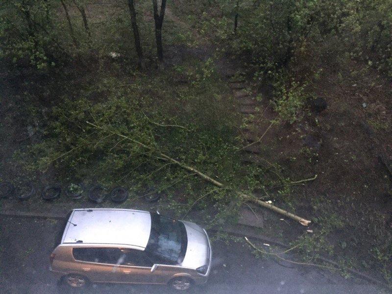 ВИркутске порывисты ветер снес остановку иповалил деревья