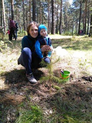 Мы посадили свое дерево)