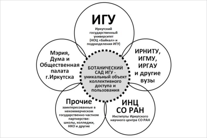 «Ромашка» прошлого и видения будущего Иркутского ботанического сад