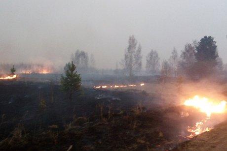 Комиссия по ЧС решила прекратить тушение пожаров на площади 19 тысяч гектаров      4 июня 14:25