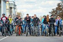 Велосипедисты. Автор фото — Маргарита Романова.