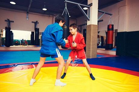 В 6-ти школах Иркутской области введут обязательные уроки самбо