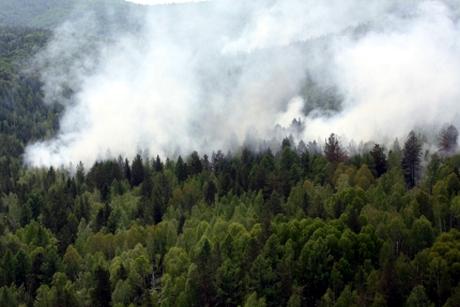 ВИркутской области из-за лесных пожаров ввели режим ЧС