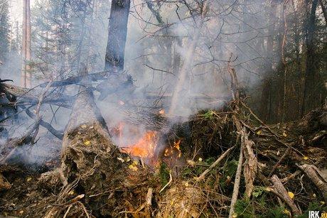 ВИркутской области площадь лесных пожаров удвоилась до104,7 тыс. га