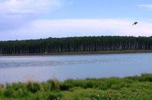 Водоем в Ново-Разводной. Фото с сайта invest38.ru