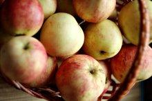 Дары природы: корзинка яблок