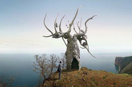 Фото с сайта Байкальского экологического водного форума