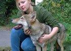 Фото из группы иркутской зоогалереи в социальной сети «ВКонтакте»