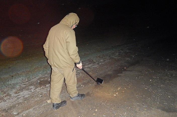 НаБайкале пробуют спасти популяцию краснокнижной монгольской жабы