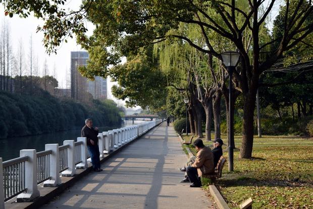 Шанхай очень чистый и зеленый город