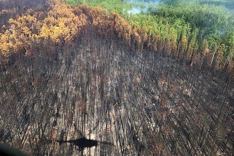 Площадь пожаров вИркутской области сократилась в2,6 раза в 2017