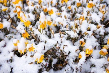 Навыходных вИркутской области предполагается ухудшение погоды