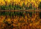 Фотография «Отражение осени»
