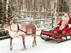Мир на ладошке. Праздничная экскурсия «Дед Мороз и олени»