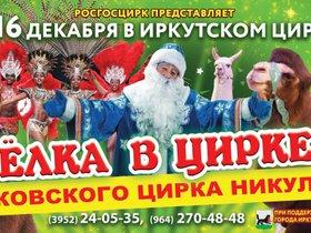 Новогодние представления в Иркутском цирке