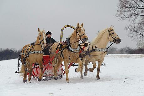Фото с сайта mgomz.ru