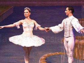 Гастроли театра «Классический Русский Балет» в Иркутске. Спящая красавица