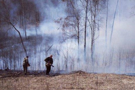 Натерритории «Заповедного Прибайкалья» устранили лесной пожар