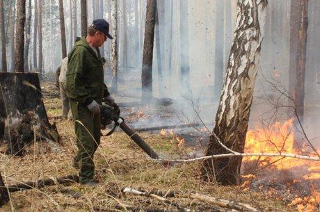 Один лесной пожар потушили вИркутской области