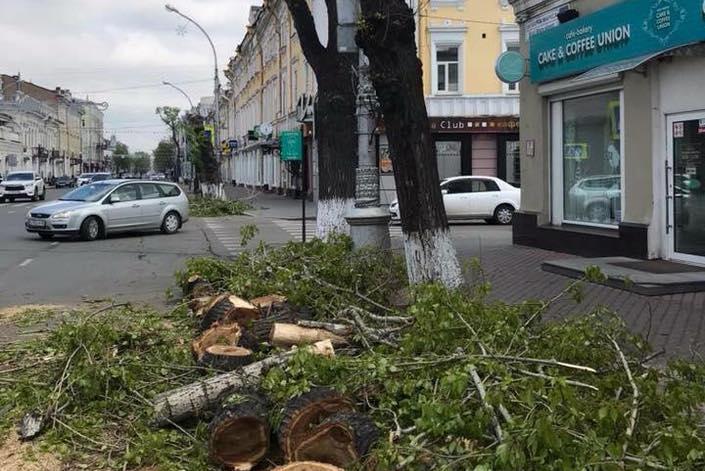 На улице Карла Маркса. Автор фото - Ольга Жуйкова