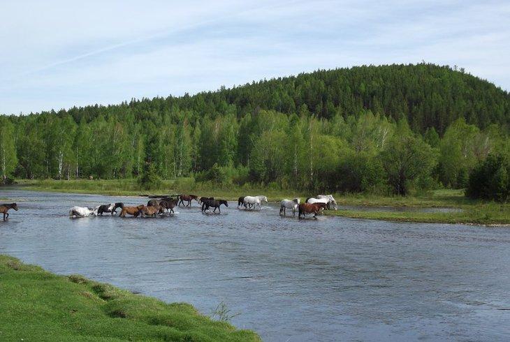 Хор-Тагна. Фото с сайта краеведприангарья.рф