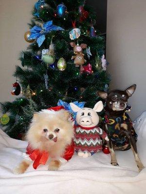 Дед Мороз, Хрюша и Снегурочка
