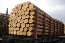 Фото с сайта www.1000dosok.ru