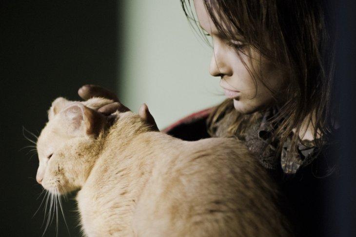Кадр из фильма «Война Анны». Фото с сайта www.kinopoisk.ru